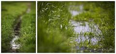 Essen Fischlaken (Photofreaks [Thank you for 2.000.000 views]) Tags: germany deutschland essen nrw ruhr ruhrgebiet nordrheinwestfalen ruhrpott northrhinewestphalia kohlenpott fischlaken ruhrmetropolis adengs wwwphotofreaksws shopphotofreaksws