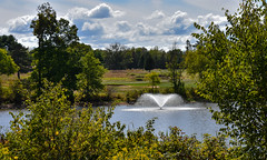serene (Dotsy McCurly) Tags: serene serenity lake pond water sky trees nature beautiful nikon d7200 dof nj park