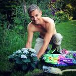/ My Garden: one of My Passions  By @schwarzejohannisbeere   #HeavenSky a #artist from #koblach #feldkirch #vorarlberg #austria #igersaustria #igerskoblach #ig_europe #HeavenSkyPopArtica #passion #garden #hobbies #Hortensie #gardening #nature #sunlight #l
