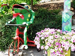 GOTTA MAKE IT GOTTA MAKE IT (Visual Images1) Tags: ny green tricycle frog binghamton rosspark discoverygarden