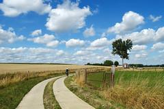 DSC_0807 (Frie Van Grunderbeeck) Tags: belgium belgi vlaamsbrabant hageland outdoor landschap landscape roosbeek boutersem wolk cloud veld field fiets hoed fietser bike hat tree boom hek fence