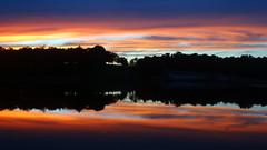 DSC00397 (gregnboutz) Tags: cloud clouds beautifulclouds cloudy cloudylake cloudiness colorfulsunset colorfulsunsets lakesunset lakesunsets sunset sunsets jayceecolecountylake jayceecolecountypark