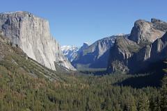 DSC04287 (oowhatsthatdoo) Tags: yosemite usa california granite halfdome elcapitan