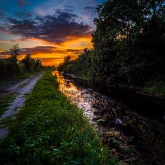Royal Sunset (cogy) Tags: royal canal kilcock kildare ireland