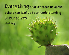 What Irritates You? (Lynda Apel) Tags: mindfulness consciousness inspirtionalquotes motivational carljung understanding ourselves