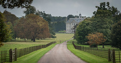 Early Autumn in Kingston Lacy, Dorset, England (pjbranchflower) Tags: national trust lacy dorset england landscape home autumn fall color colour kingston