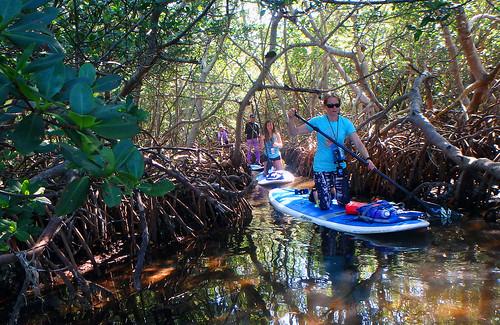 5-1-15-Paddleboard-Yoga-Teacher-Training-Sarasota-FL 14