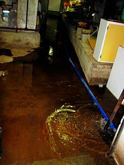 Basement Flood (sobergeorge) Tags: queens foresthills basementflood sobergeorge localneighborhood