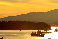 Golden_2016 (Stephen Wilcox - Jetwashphotos.com) Tags: ocean road park travel bridge trees sunset sea canada mountains water architecture vancouver boats golden evening bay harbor marine flickr image harbour dusk ripple ships north transport over craft vessel columbia photograph shore inlet british stanleypark burrard wp westvancouver the jetwashphotos