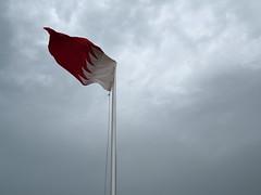 Qatari flag!