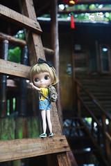 hb02 (cacala) Tags: doll blythe blythedoll rbl happyharbor