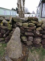 Baildon Moor Cup-and-ring stone (deadmanjones) Tags: prehistoric petroglyph rockart baildon caravanpark shipleyglen cupandring cupandringstone