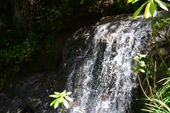 Tatasirire (angel10gt) Tags: parque de guatemala ecologico jalapa cascadas tatasirire