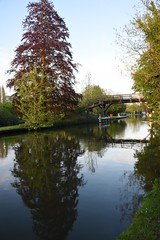 Hurley Bridge 3 (rq uk) Tags: bridge thames reflections river nikon d750 riverthames hurley thamespath afsnikkor28300mmf3556gedvr nikond750 rquk