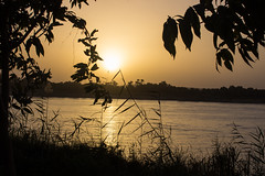 Sunset (cpt_ahmed93) Tags: sunset nature aswan nileriver