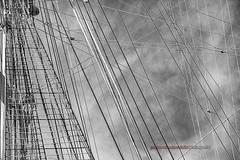 Nave Scuola Amerigo Vespucci (Pachibro Portfolio) Tags: canon eos boat ship nave 7d battello cruises trieste naviglio veliero friuliveneziagiulia amerigovespucci vascello seacloud imbarcazione scialuppa canoneos7d shotsts scattifotografici pasqualinobrodella pachibroportfolio pachibro vespucci85