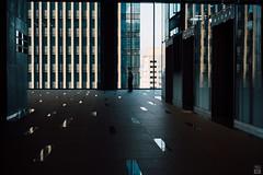 (yasu19_67) Tags: sunset sunlight japan cityscape 55mm m42 osaka digitaleffects photooftheday filmlook filmlike vsco mamiyasekorsx55mmf18 vscofilm sony7ilce7
