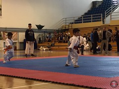 stefanou_15_5_2016_knockdown_36