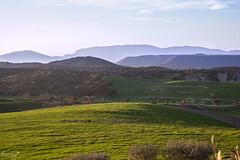 Mentre el sol cau (ancoay) Tags: sunset grass barley canon landscape atardecer hill meadow paisaje catalonia campo catalunya prado hillside arbre aire libre paisatge noguera ordi cebada canon600d ancoay
