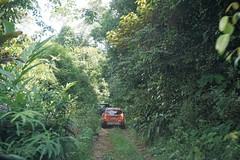 Going off-road (Kewty-pie) Tags: offroad roadtrip malaysia johor lemarkowaterfalls
