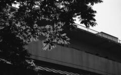 160505_PentaxME_014 (Matsui Hiroyuki) Tags: pentaxme fujifilmneopan100acros jupiter985mmf20 epsongtx8203200dpi