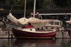 IMG_9970 - Mystery Bay State Park - 2016 Croosa Palooza - SCAMP (BlackShoe1) Tags: cruise june boats boat washington olympicpeninsula wash porttownsend pacificnorthwest wa rowboat pugetsound washingtonstate skiff scamp irondale rowboats oakbay smallboat matsmatsbay porthadlock nordland smallboats jeffersoncounty admiraltyinlet palooza skiffs indianisland smallcraft porttownsendwa marrowstoneisland fortflaglerstatepark smallcrafts mysterybaystatepark victorianseaport pocketyacht nordlandwa eastjeffersoncounty porttownsendpocketyachters ptpy oregoncoots croosa pocketyachters 2016paloozacrooza