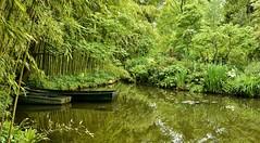 il giardino di Monet ... (miriam ulivi) Tags: verde green nature reflections boats barche acqua riflessi francia giverny normandia vegetazione bamb salici giardinoacquatico nikond7200 miriamulivi fondazioneclaudemonet