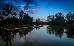 Reflexos no rio So Joo - Cabo Frio - Rio de Janeiro (mariohowat) Tags: brazil brasil riodejaneiro natureza saquarema entardecer cabofrio fimdetarde pontequebrada riosojoo