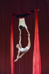 Dmitrey&Valya (Jul Chitay) Tags: aerial aerialist sport dance flexibility aerialarts arts high aerials woman girl duo man silks red aerialsilks splits gymnastics performer people