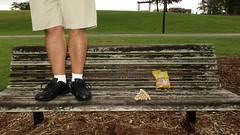 Bench Monday: Peanut Pyramid Edition (pikespice) Tags: 10millionphotos bench benchmonday hbm werehere hereios peanuts nuts widescreen headless decapitated