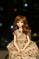 IMG_8223 (Emma Wolf) Tags: doll bjd customblythe obitsucustom classydoll dimdolllarina mystickids zinnadollmore