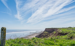 A view along the clilffs 2 (jack cousin) Tags: sea sky people cliff dog seascape beach grass clouds fence nikon waves northsea brambles breakwater fencepost groynes eastyorkshire hornsea d610 mappleton on1photos 2ndworldwarbunker
