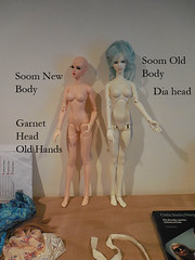 soomoldandnew (lynperkins@ymail.com) Tags: female super soom bodies gem
