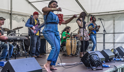 I HAD A WONDERFUL DAY AT AFRICA DAY 2015 [FARMLEIGH HOUSE IN PHOENIX PARK]-104503