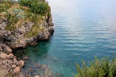 Strinopr Lipari ME ( Strinopr) Tags: sea cane mare sicily gatto sicilia eolie lipari isola isoleeolie nikonclubit