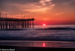 Day 149/366 Virginia Beach Sunrise (Tewmom) Tags: ocean sea sky beach water sunrise landscape seaside outdoor shore serene virginiabeach day149366 366the2016edition 3662016 vabeachfishingpier 28may16