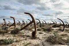 Zugunruhe (www.nicolabertellotti.com) Tags: sea abandoned beach boat sand barca mare ship decay dune navy forgotten sailor spiaggia sabbia anchors urbex abbandono abbandonato decadenza marinaio abbandonate ancore