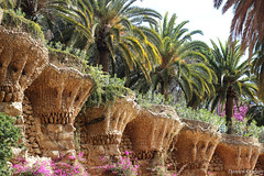 Parc Gell wonders (Damien ) Tags: barcelona park flower stone palm parc barcelone gell