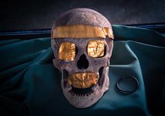 2000 - 1400 B.C. (Mule67) Tags: 2016 turkey kayseri archeological museum skull smile 5photosaday