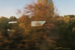Eurostar train (Myriam Bardino) Tags: train eurostar