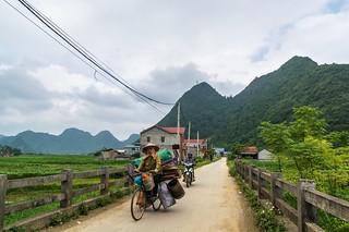 bac son - vietnam 65