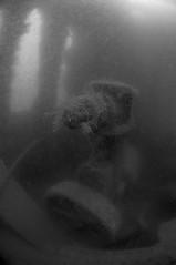 Plymouth-201605-JamesEaganLayne1-23-EngineRoomArea-PossiblePump (Tony J Gilbert) Tags: macro marine underwater plymouth diving scylla jameseaganlayne nikond300 handdeeps wwwdivingplymouthcom ceeking hilseapointrocks
