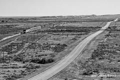 Desolate... (Colorado & Southern) Tags: railroad train colorado railway trains amtrak passenger railfan railroads railroading railfanning passengercars gep42dc coloradorailroads coloradotrains thesouthwestchief bnsfraton bnsfsratonsubdivision