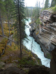 Athabasca Falls Canyon (C.J.Marcolini (Photo Hack)) Tags: water beauty rocks jasper natural canyon carving rapids erosion formation timeless glacial pristine crystalclear