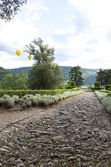 _DSC7564 (Robby68) Tags: vert marqueyssac jardin dordogne nature france soir suspendu
