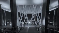 Vs (elenaleong) Tags: artscience architecture museum singapore elenaleong landmark marinabay symmetrical