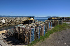 Lobster traps in L'Anse-a-Brillant (Gasp), Qubec (Ullysses) Tags: anseabrillant gasp qubec canada gaspesie lobstertraps summer t douglastown casierhomards lobsterpots