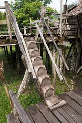 Aboriginal Sarawak log stairs (quinet) Tags: 2015 aborigne borneo malaysia sarawak sarawakculturalvillage treppen ureinwohner aboriginal escalier native stairway kuching