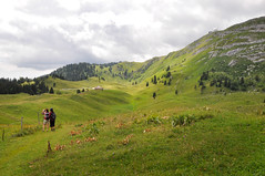 20160806_035_DennisWansink (Dennis Wansink) Tags: zoogdiervereniging zomerkamp bergen jura landschap radar vaud zwitserland ch