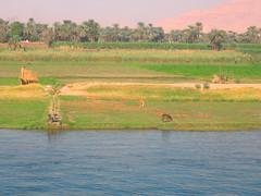 Bord du Nil entre Louxor et Esna (alain_halter) Tags: nil pays palmiers egypte fleuve afrique